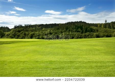 高尔夫球场 - 站酷海洛正版图片, 视频, 音乐素材交易