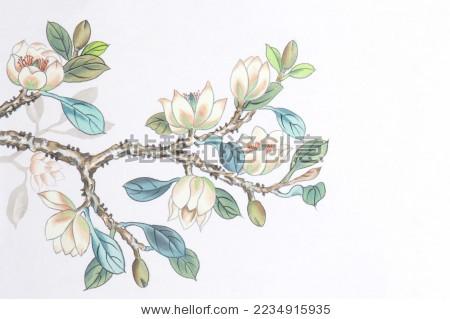 金针含笑花花国画蘑炖鸡腿图片