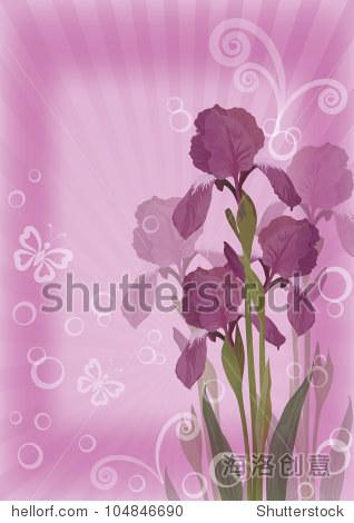 花淡紫色背景对于虹膜的贺卡,蝴蝶,射线,圆圈和数字.