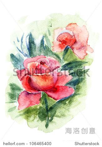 美丽的玫瑰花朵,水彩画
