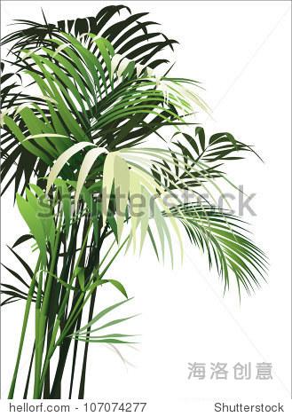 自然热带植物(矢量图)