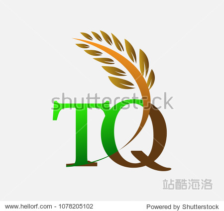 agriculture wheat logo template vector icon design colored green图片