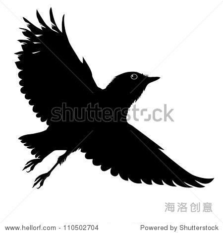 大翅膀的小鸟翱翔在天空 动物 野生生物,公园 户外 站酷海洛创意