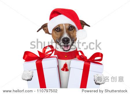 圣诞老人圣诞狗礼物 - 动物/野生生物,假期 - 站酷,,.