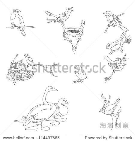 数字手绘邮票 - 动物/野生生物,复古风格 - 站酷海洛