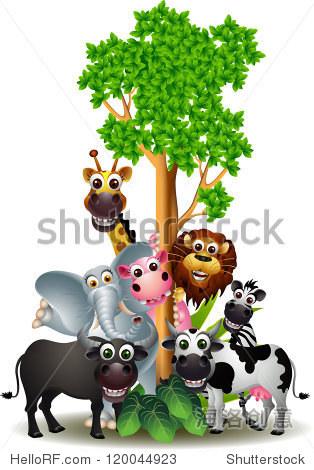 有趣的动物卡通系列