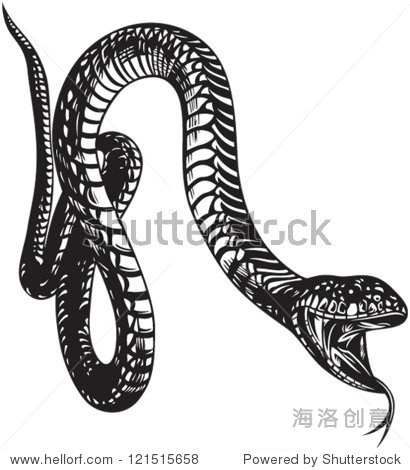 dnfsnake_big snake with open mouth black and white style