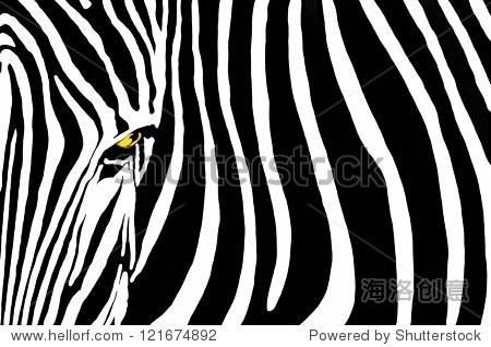 斑马线,大胆的黑白条纹构图