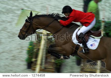 范吉隆坡2006世界杯决赛室内马跳 - 动物\/野生