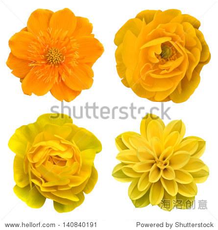 黄色的拼贴画花