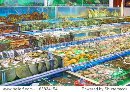 海鲜市场在香港鱼缸