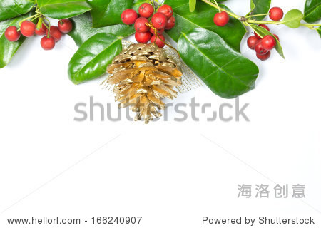 圣诞节的冬青树叶在白色背景上