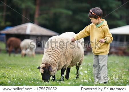 可爱的小男孩喂羊 - 动物/野生生物,人物 - 站酷海洛