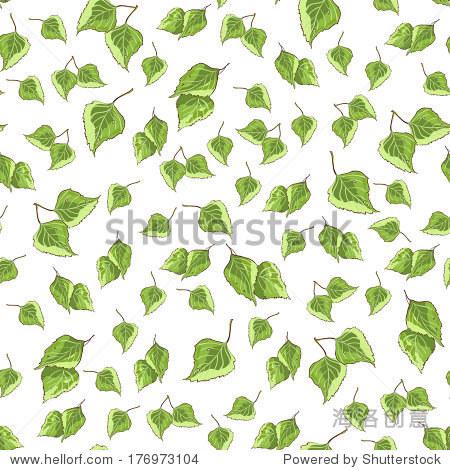 与绿色背景纹理桦树的叶子