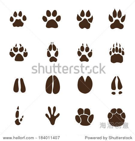 动物的脚印