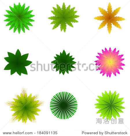 树木,植物,花,草项顶视图景观设计/矢量图标