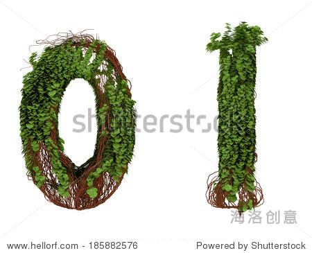 两个数字的藤蔓,树枝和树叶