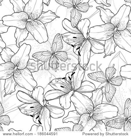 美丽的黑白,黑白无缝背景有百合花和蝴蝶.手绘轮廓线.