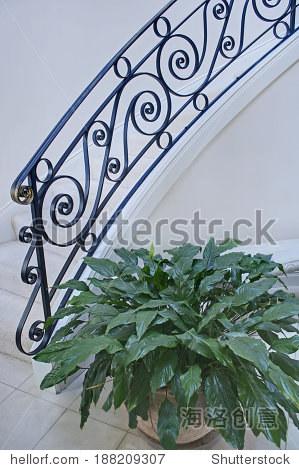 和光与黑铁楼梯栏杆和盆栽的植物垂直格式的设置 简单,干净,经典