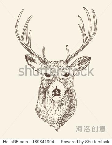 鹿头雕刻风格,复古插画手绘