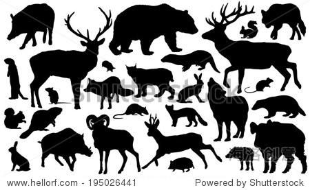27森林动物剪影在白色背景上