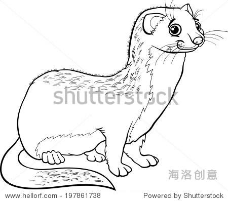 黑白卡通矢量图着色的可爱黄鼠狼动物的书