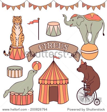 可爱的马戏团动物:老虎,大象,海豹,熊