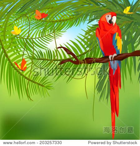 热带雨林和鹦鹉.矢量插画家 - 动物/野生生物,自然