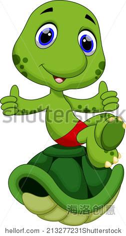 可爱的乌龟坐在外壳的顶部