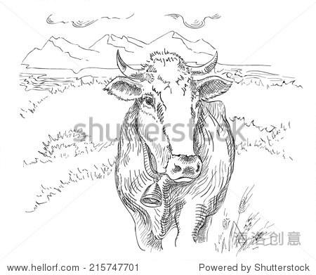 画牛- 动物/野生生物,自然 - 站酷海洛创意正版图片