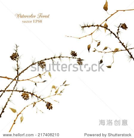水彩树枝树叶和松果,手绘矢量插图