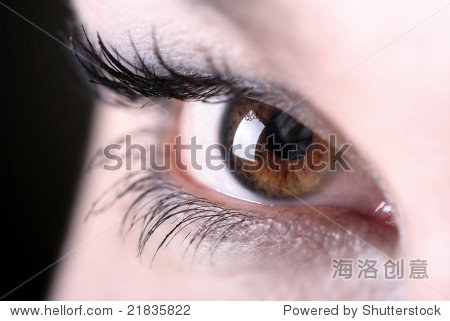 黑发的美丽的眼睛