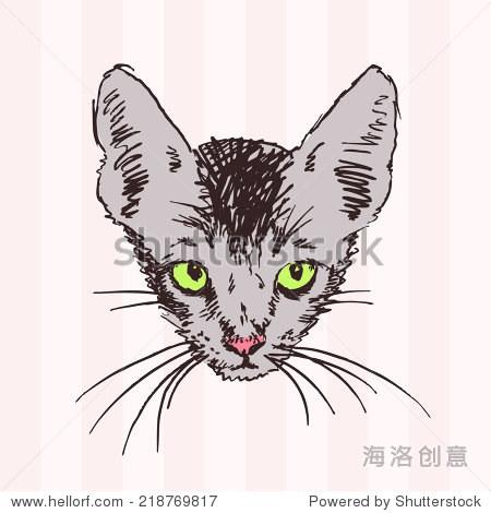 猫头素描与绿色的眼睛,手绘插图-动物/野生生物,其它