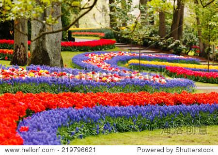 春天的花园 - 自然,公园/户外