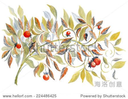 用树叶和浆果水彩插图的分支.