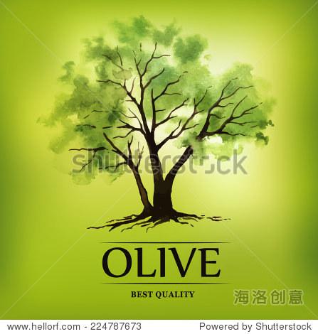 手绘橄榄树和水彩插图