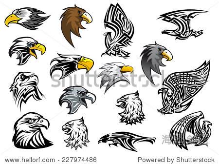 卡通鹰,隼和鹰头侧面为吉祥物,纹身或标志设计孤立在白色背景,矢量