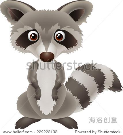 可爱的卡通插图浣熊