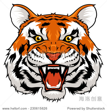矢量插图愤怒的老虎孤立在白色的