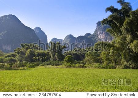 Rice field and mountain landscape near Yangshuo, Guangxi, China