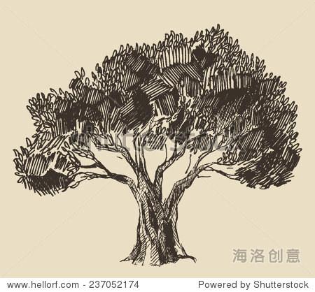 古董橄榄雕刻的背景.手绘插图