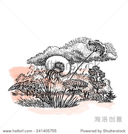 与森林景观手绘矢量插图,蒲公英和云.