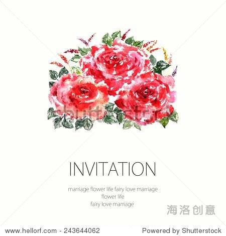红玫瑰.水彩花卉装饰.花的气味.花的背景.生日贺卡.