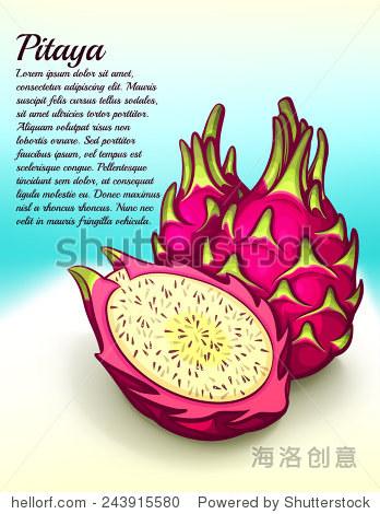 新鲜火龙果矢量图 - 食品及饮料,自然 - 站酷海洛创意图片