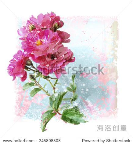 手绘水彩粉红色的玫瑰 - 假期,自然 - 站酷海洛创意