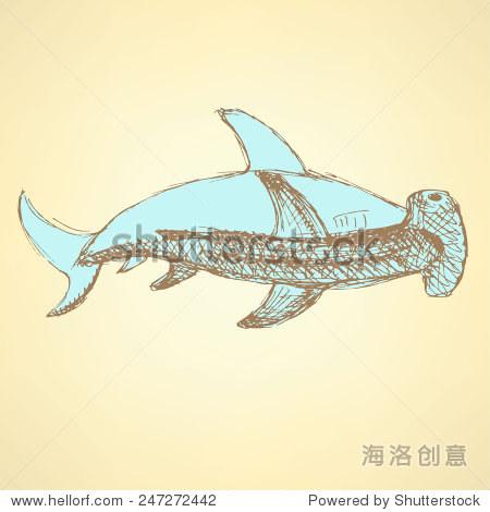 素描锤头鲨鱼在复古风格,向量 - 动物/野生生物,自然