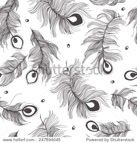 无缝的孔雀羽毛模式