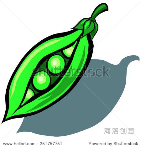 向量卡通可爱的豌豆
