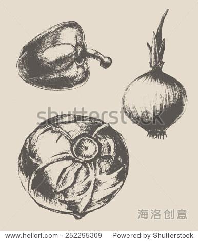 复古手绘的蔬菜(辣椒,洋葱,卷心菜),矢量插图,素描