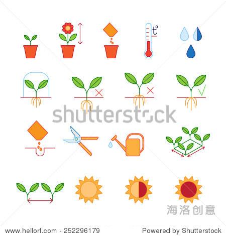 种子和种植指导步骤,修枝剪,浇水图标集